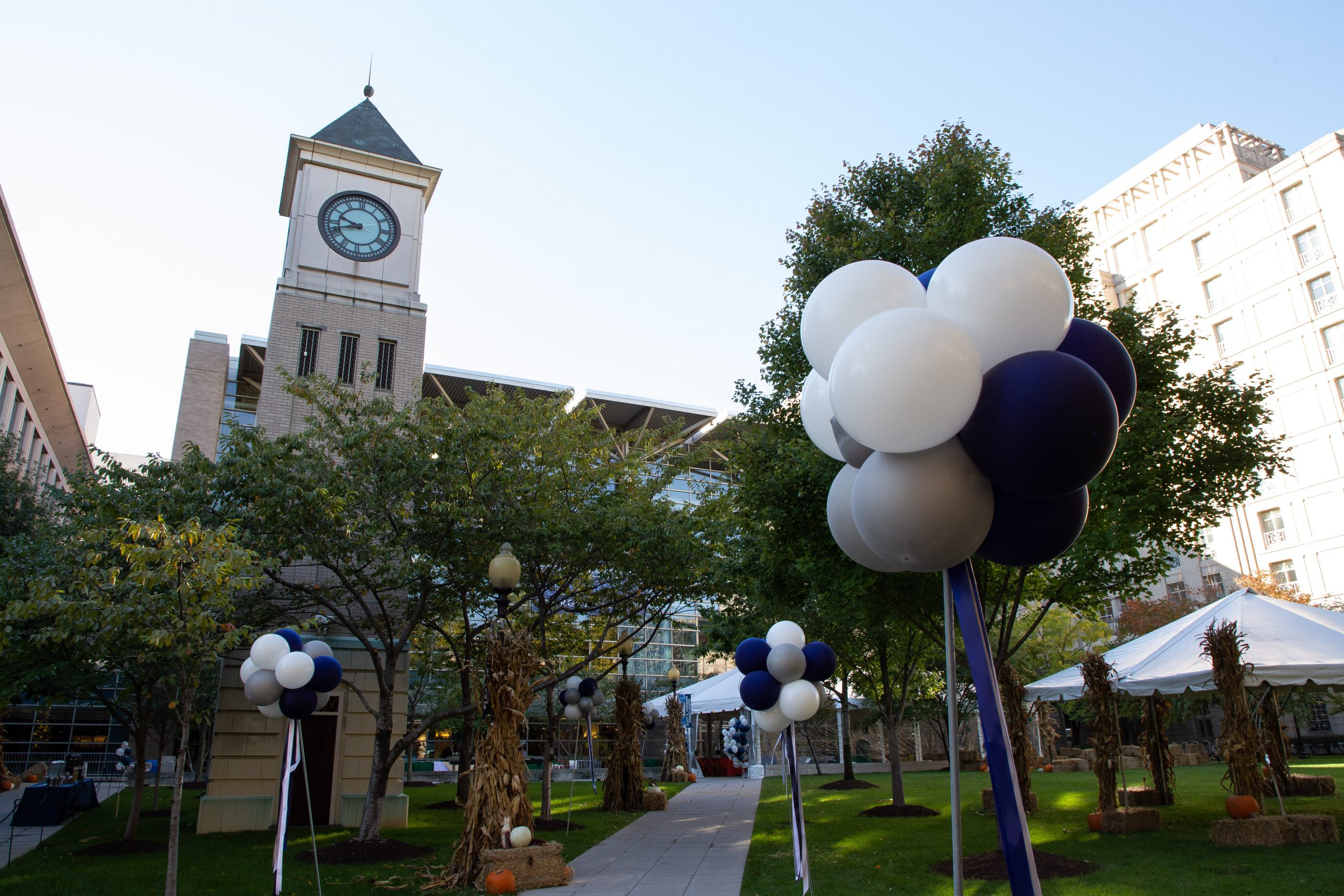 On the Law Center campus, Eleanor Holmes Norton Green is decorated with balloons during 2019's Reunion picnic.