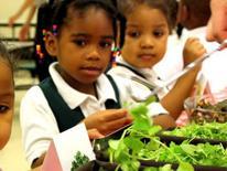 Pre-school children at a salad bar in a DC school