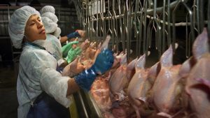 Workers in a poultry-processing plant